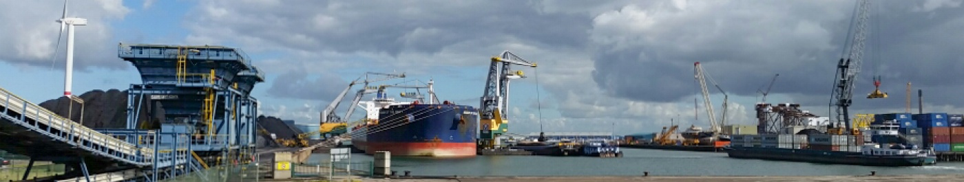 Discharging and board/board transhipment on M/V Wisdom of the Sea 1
